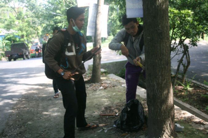 Aksi cabut paku di pohon oleh calon anggota KOPHI Semarang, Sabtu (2/4). (Dok. Istimewa)