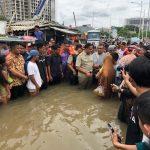 Banjir 2020, Salah Siapa?